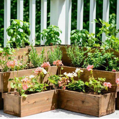 DIY ideas for garden